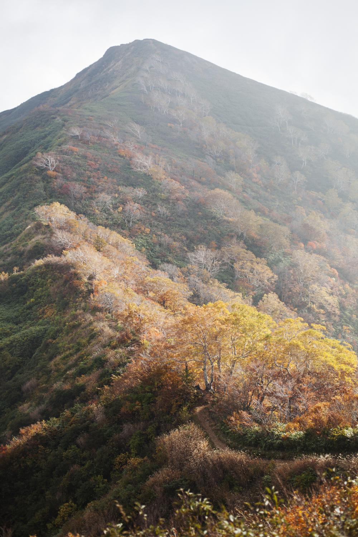 朝日連峰 紅葉
